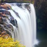 Whangarei falls- northland